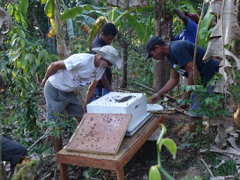 Ferme-école intégrée en agroforesterie