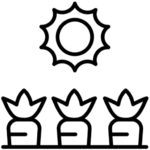 Logo Potager OK