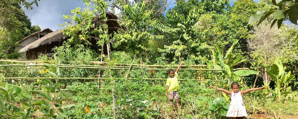 agroforesterie tropicale ferme intégrée nosy komba madagascar